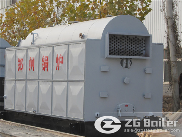 DZL chain grate steam boiler for bathroom heating in Mongolia