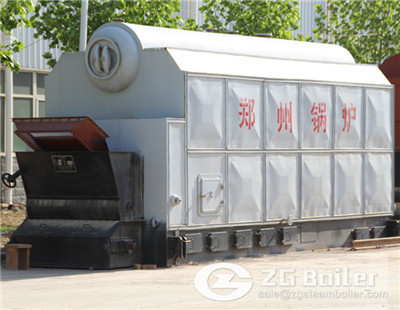 DZL Coal Fired Hot Water Boiler